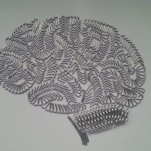 brain-1356465-1920